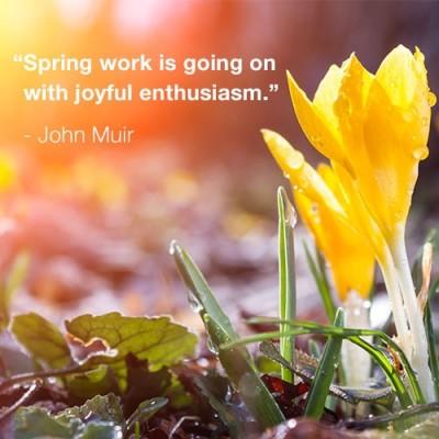 Happy Spring - Happy Easter - Happy Passover